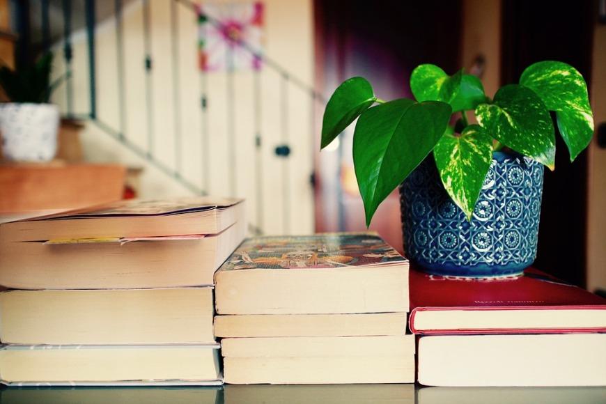 livres à vendre